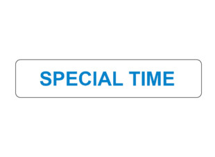 Special Time Prompt Labels