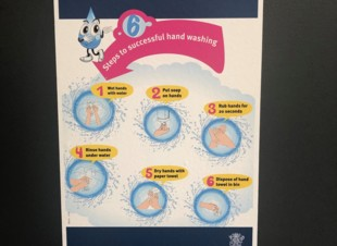 Steps to successful hand washing Removable A3 Posters